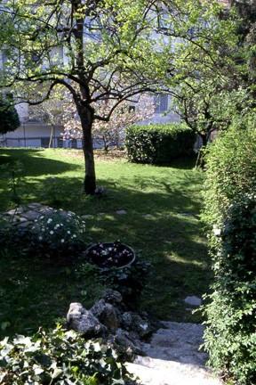 Visita al giardino di casa ardito nell 39 ambito dell for Insieme del programma della casa