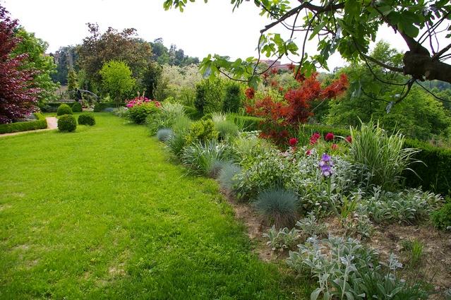 Foto delle fioriture del giardino di casa accomo grassi for Giardini di casa